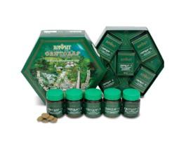 Фитокомплекс Святодар для очищения организма от глистов и шлаков, полный комплекс